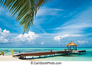 maldivian, casa, ligado, um, ilha tropical, viagem, fundo