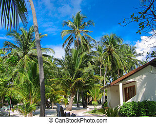 Maldivian house