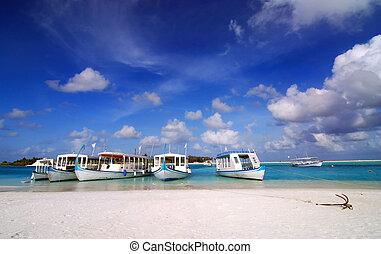 Maldivian Port - Beautiful white Maldivian beach and five...
