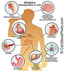 male alcoholism - medical illustration of the damage caused...