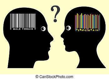 Male and Female Brain Concept