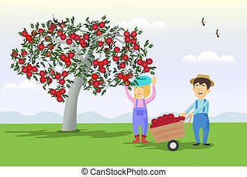 Male and female gardeners are collect apples from the tree to the cart. With mountains and sky as the background