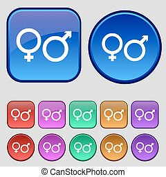 male and female icon sign. A set of twelve vintage buttons for your design. Vector