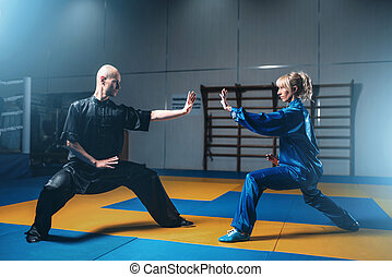 Male and female wushu fighters exercises indoor, martial arts. Sparring partners in action