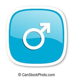 male blue glossy web icon
