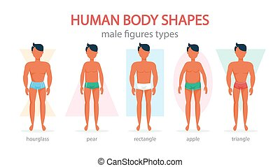 Male body shapes set. Triangle and rectangle, pear and apple