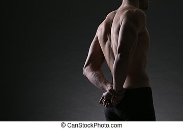 male bodybuilder model