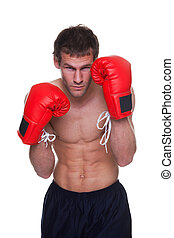 Male boxer isolated - Male boxer in a defensive stance...