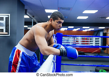 Male boxer standing in gym
