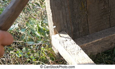 Male carpenter hammers iron nail into a wooden plank - Male...