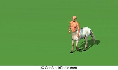 male centaur half horse half man isolated on green screen -...