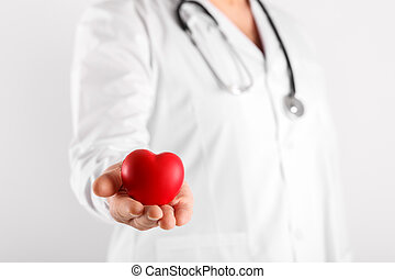 Male doctor holding heart in hands