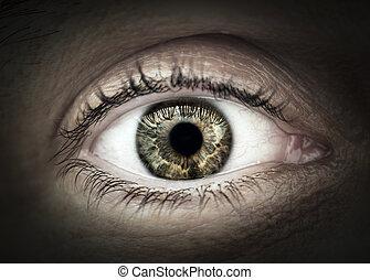 Male eye macro closeup