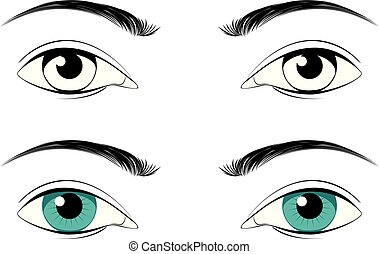 Male eyes with eyebrows - Detailed male eyes with eyebrows...