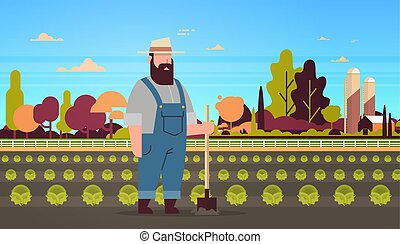 male farmer holding shovel planting green cabbage vegetable farmland field countryside landscape eco farming concept horizontal full length flat