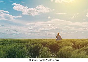 Male farmer walking through a green wheat field