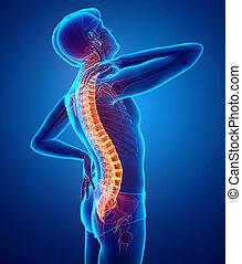 Male Feeling the back pain - 3D Illustration of male Feeling...