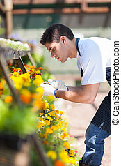 male florist working inside nursery