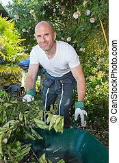 male gardener in uniform working