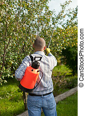 Male gardener spraying  trees