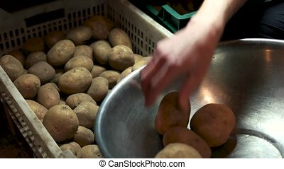 Male hand and raw potatoes.