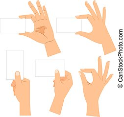 Male hand holding blank card set