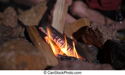 Male hand putting firewood into campfire - Close-up of male...