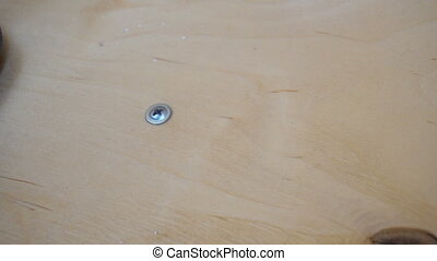 male hand screw the screw into the wood with a screwdriver.
