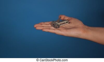 Huddle of keys on woman's palm on blue background.
