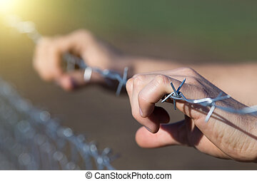 Close up of male hands holding barbed wire fence and begging for help