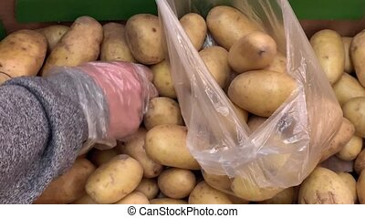 Male hands put potatoes in the transparent plastic packing...