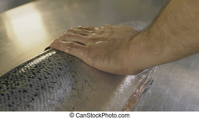Male hands touch raw fish, close up