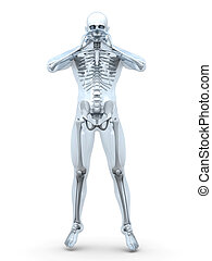 Male Human anatomy visualisation - 3D Illustration of the ...