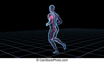 Male jogger - Medical 3d animation of a running male -...