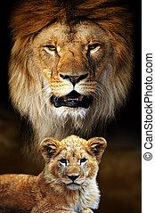 Male lion and cub portrait on savanna landscape background