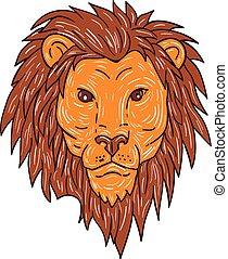 Male Lion Big Cat Head Drawing