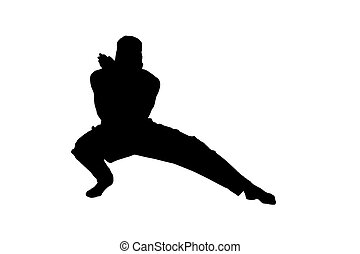 Male ninja silhouette on white background