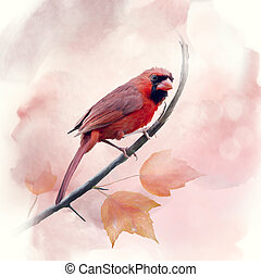 Male Northern Cardinal watercolor