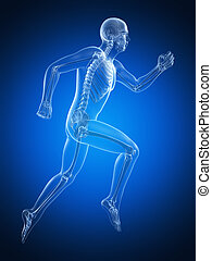 Male runner - 3d rendered illustration of a male runner