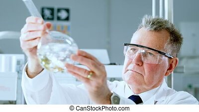 Male scientist experimenting in laboratory 4k
