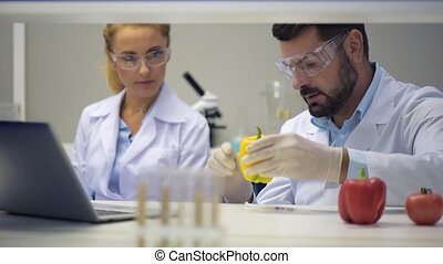 Male scientists consulting with colleague while injecting peppers with chemicals