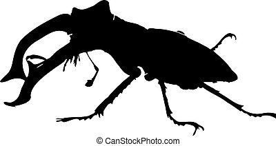 clipart of a male stag-beetle isolated on white