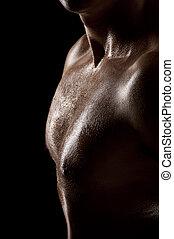 Male torso - Athletic male torso in dark key. Focus on the...