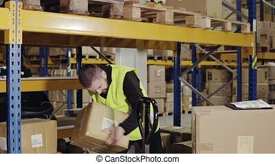 Male warehouse worker loading boxes. - Young male warehouse...