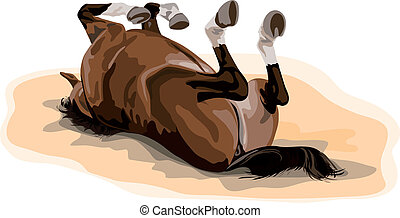 male warmblood horse rolling in sand. typical german...
