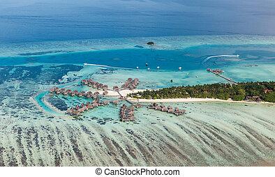 malediwy, północ, okolica, uciekanie się, typowy, atol