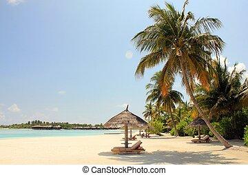 malediwy, plaża, prospekt