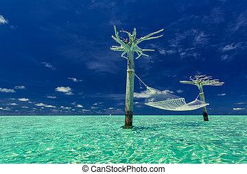 malediwy, tropikalny, środek, hamak, laguna, opróżniać
