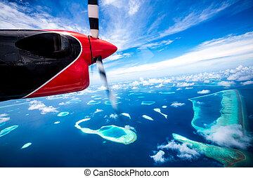 malediwy, wyspa, hotel, -, ocean, indianin