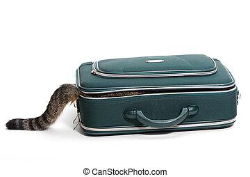 maleta, con, cola